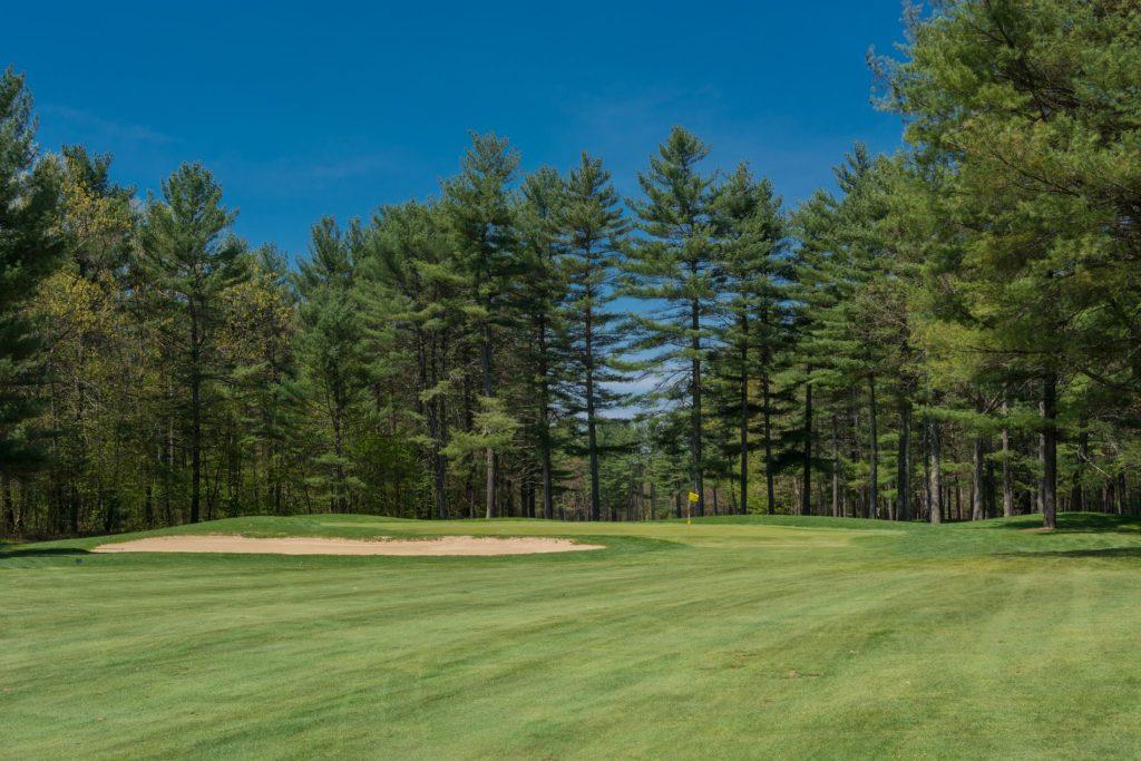 Sohegan-Woods-3.jpg