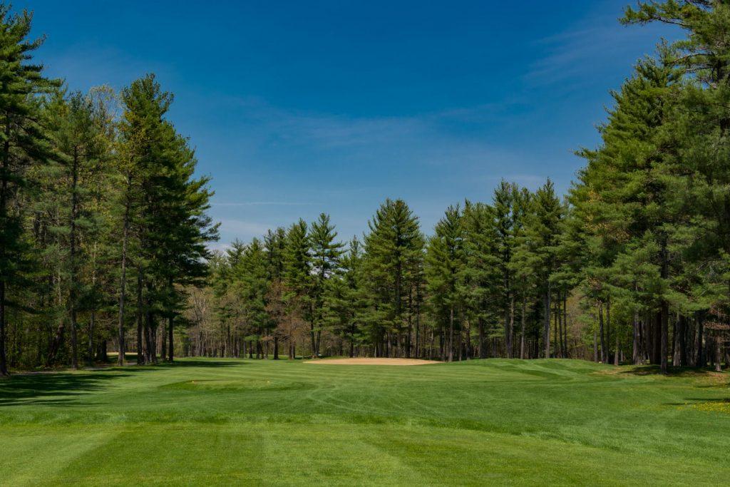 Sohegan-Woods-6.jpg